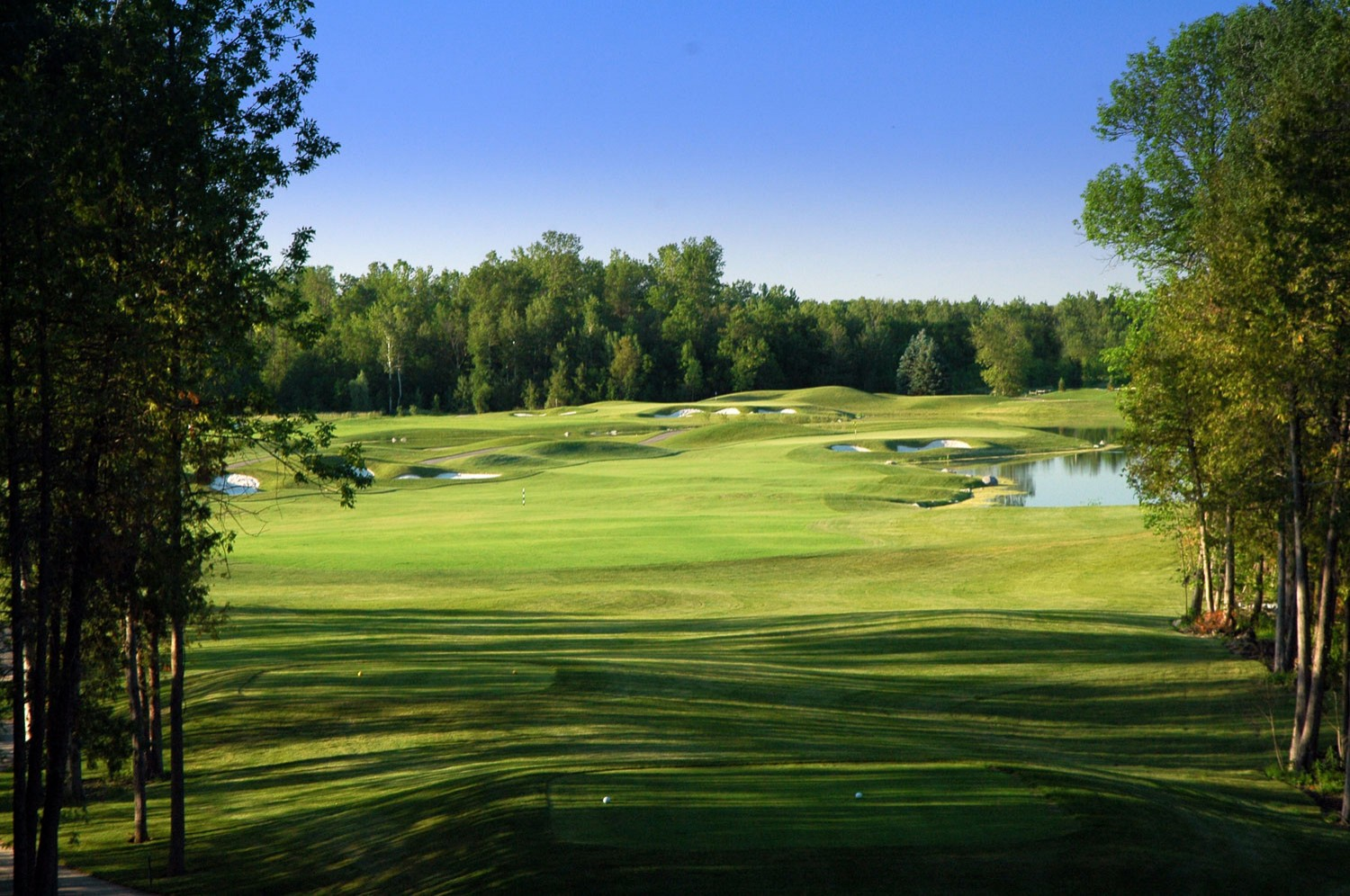Cardinal Golf Club - Redcrest