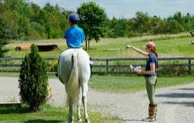 Dreamcrest Equestrian Services
