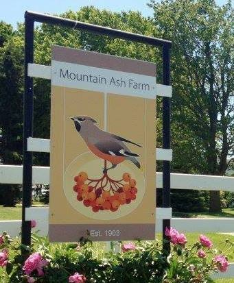 Mountain Ash Farm Hospitality Inc.