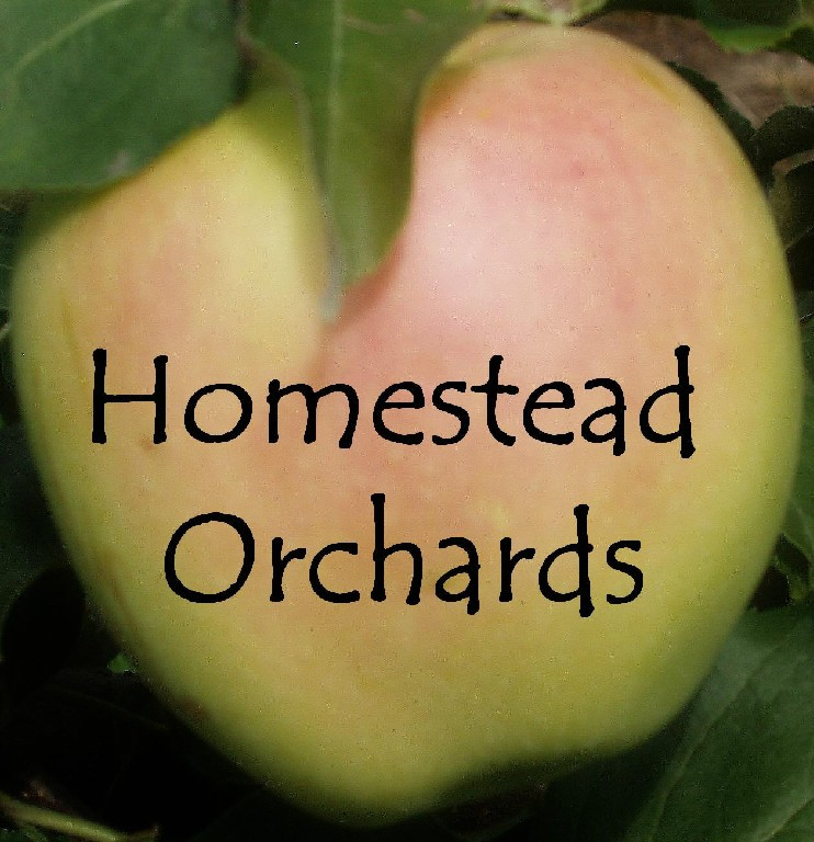 Homestead Orchards